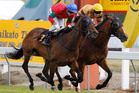 Annie Higgins (outer) will be seeking to add the Auckland Cup to her Waikato Gold Cup triumph. Photo / Christine Cornege