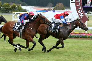 Xanadu can finally gain some revenge on her nemesis Final Touch, shown here beating her in the Telegraph Handicap at Trentham, in the Westbury Classic at Ellerslie today. Photo / Getty Images