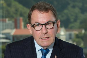 John Banks' Act Party is responsible for the charter school policy.  Photo / Mark Mitchell