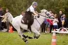 Amie Bentall of Hastings shows her form in Mounted Games training drills ahead of the Horse of the Year Show. Photo / APN