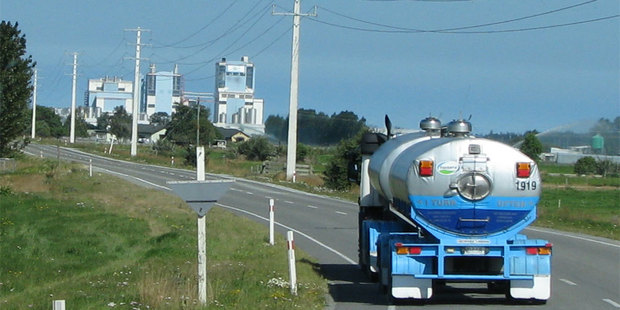 Fonterra boss Theo Spierings already has intimate knowledge of the Dutch dairy sector. Photo / Bay of Plenty Times