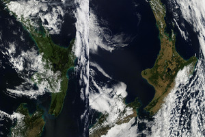 Satellite images from March 2012 (L) and March 2013 (R) show significant browning across the North Island.  Photo / NASA