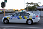 Parents are concerned a gang culture is developing at an Auckland school after a dozen police officers were called to break up a lunchtime brawl.