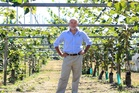 Paul Jones DMS director, are bankrolling orchardists who want to convert from green to gold. Photo / Bay of Plenty Times
