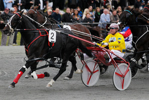 No.2 Terror To Love driven by Anthony Butt. Photo / Christine Cornege