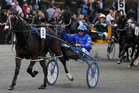 Smolda, driven by Mark Purdon. Photo / Christine Cornege