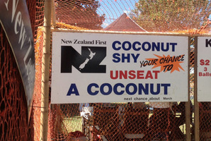 New Zealand First had used the coconut shy sign since 2007 - with only one complaint. Photo / Supplied