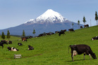Mt Taranaki is an ever-present, picturesque backdrop to Stratford's streets. Photo / Mark Mitchell