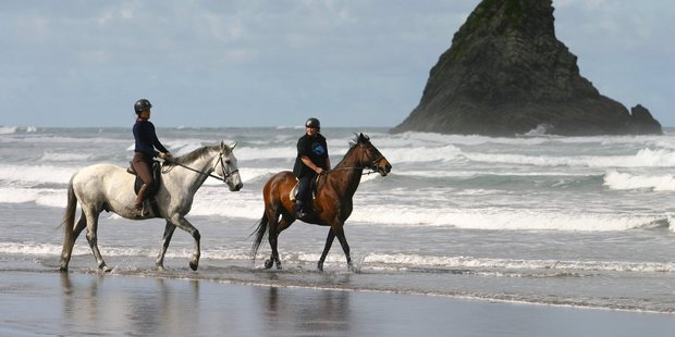 Karekare beach has been named as one of the best beaches in the country by a US magazine. Photo / APN
