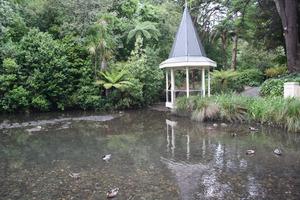 The duck pond at Wellington Botanic Gardens. Photo / APN