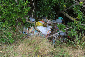Household rubbish found dumped at John Wilson Ocean Dr during the Our Seas Our Future Coastal Cleanup. Photo / Supplied