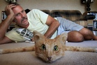 Taxidermist Andrew Lancaster is selling a rug made from a cat on Trade Me. Photo / John Borren