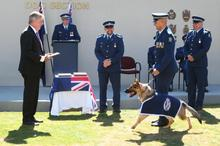 Police tweeted this picture of police dog Asta graduating as part of a global police tweet-a thon.  Photo / Supplied 