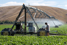 Hugh Ritchie checks the progress of an irrigator on his farm at Otane.  Photo / Mark Mitchell