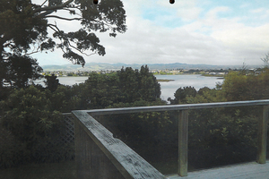 The unobstructed view of Tauranga Harbour from Brian Kent's deck after the native trees were felled. Photo / Tauranga District Council