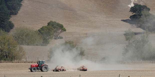 Pastures showing the signs of drought on farms in central Hawkes Bay near Waipawa. Photo / Mark MItchell