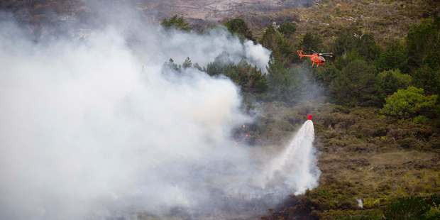 More bush fires are predicted as New Zealand summers get hotter and dryer. Photo / Greg Bowker
