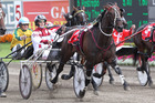 Christen Me returns to Addington tomorrow night after a scorching 1:50.5 mile in Sydney. Photo / Gary Wild