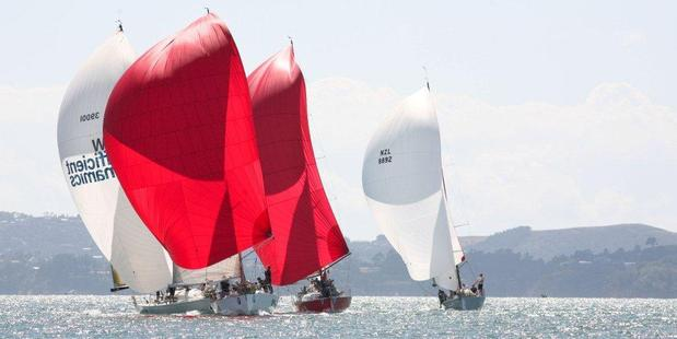 Elliotts will be attracting a lot of attention during the regatta. Photo / Ivor Wilkins