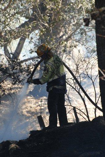 A firefighter dampens hotspots left after fire tore through about 5h of a roadside pine plantation on Whangehu Valley Rd near Masterton.