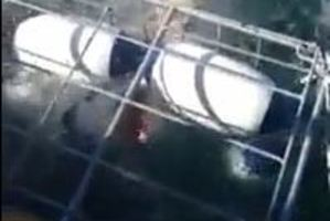 The shark lurched into the cage and thrashed abouyt in the water. Photo / Youtube / Brian Plummer