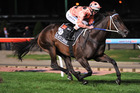 The brightest star at Moonee Valley on Friday night was Black Caviar, winning the William Reid. Photo / Getty Images