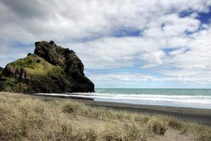 North Piha beach. Photo / Doug Sherring