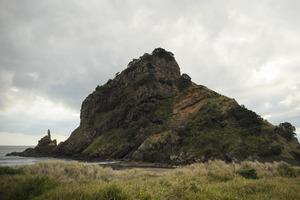Lion Rock at Piha. Photo / Jason Dorday