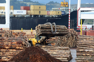 Log exports rose by 12 per cent and dairy by 24 per cent contributing to an unexpected trade surplus last month. Photo / Mark Mitchell