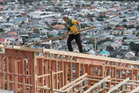 Many in the construction sector expect to increase staff and raise prices. Photo / Mark Mitchell