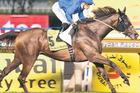 British galloper Sajjhaa easily wins the Dubai Duty Free at Meydan on Sunday.Picture / AP