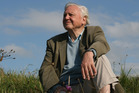 Sir David Attenborough in his new documentary 'Attenborough : 60 Yeara In The Wild'. Photo / Supplied
