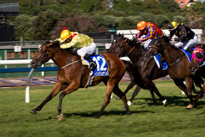 Fleur De Lune (left), ridden by Jason Jago, winning Race 8. Photo / Sarah Ivey