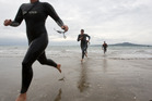 Competitors come ashore at Takapuna Beach after the King of the Bays Swim from Milford to Takapuna.Photo / Herald on Sunday