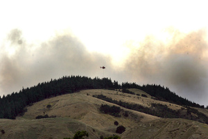 The pine forest fire at Pahaoa Rd, South Wairarapa. Photo / Lynda Feringa