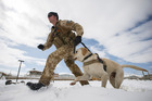 Explosive detection dog handler Lance Corporal Regan Blogg and EDD Yardley. Photo / New Zealand Defence Force