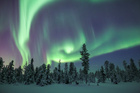 The Aurora Borealis. Photo / Thinkstock