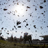 Leaves are knocked into the air as horses clear a jump during the John Smith's Handicap Steeple Chase before the Grand National horse race in England. Photo / AP