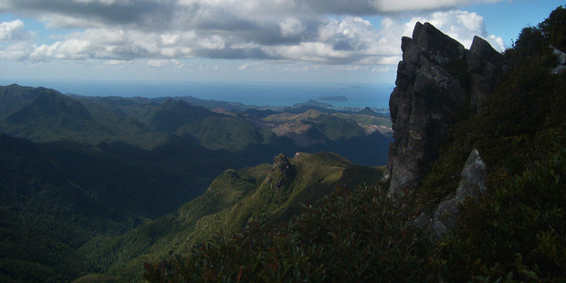 The top of the Pinnacles offers views over the forest, mountains and coastline of the southern Coromandel. Photo / Supplied