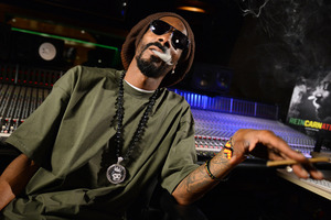 Snoop Lion is doubtful that homosexuality acceptance is showing progression in the hip-hop industry. Photo / AP