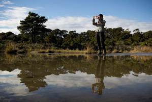 The department plans to axe 140 jobs and cut the number of conservancy regions. Photo / Greg Bowker