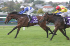 Fast Dragon proved too hot for Whistling Dixie in the Champagne Stakes at Ellerslie on Saturday.  Photo / Supplied