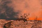 Whitney Bedford: 'Orpheus towards Manukau'. Photo / Supplied