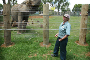 Franklin Zoo and Wildlife Sanctuary vet Helen Schofield. Photo / Greg Bowker