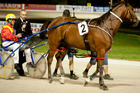 Number 2 Angelina Jolie, driver David Butcher, wins race 5 during the Auckland Trotting Club Auckland Cup held at Alexandra Park, last month. Photo / Dean Purcell