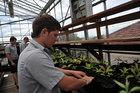 St Paul's Collegiate students planting crops. Photo / Thinkstock