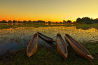 Sunrise over the Okavango Delta, Botswana. Photo / Thinkstock