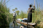 Stay safe and healthy as you make your way through the Okavango Delta. Photo / Thinkstock