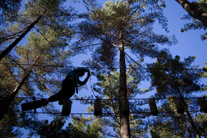 Tree Adventures, a high-ropes adventure course in Woodhill Forest, north of Auckland, began taking new bookings. Photo / Greg Bowker
