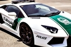 Dubai police introduced the sleek Lamborghini Aventador to its fleet in April a bid to restore the Gulf emirate's trademark image of luxury and prosperity. The green and white vehicle will be used to patrol tourist areas.